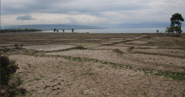 El nino-induced drought in Timor-Leste
